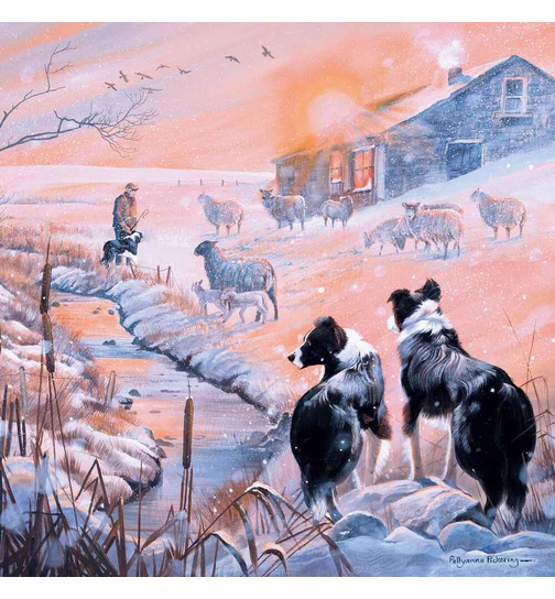 A Frosty Flock - Border Collie - Puzzle - 1000 Teile