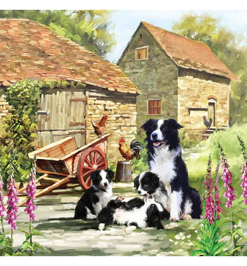 Border Collie Barn - Border Welpen - Puzzle - 1000 Teile