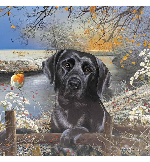 Frosty Morning - Black Labrador - Puzzle - 1000 Teile