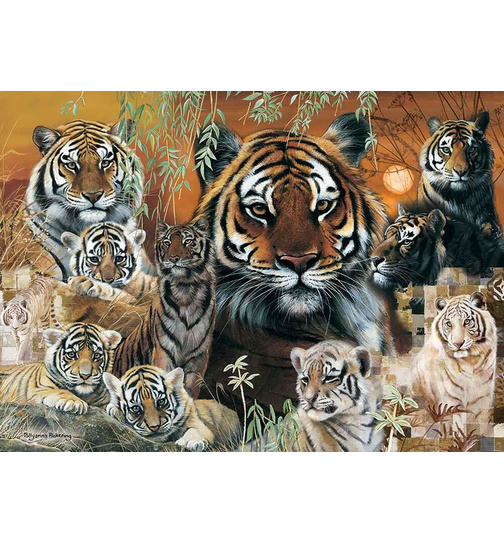 Into The Wild - Tiger - Puzzle 1000 Teile