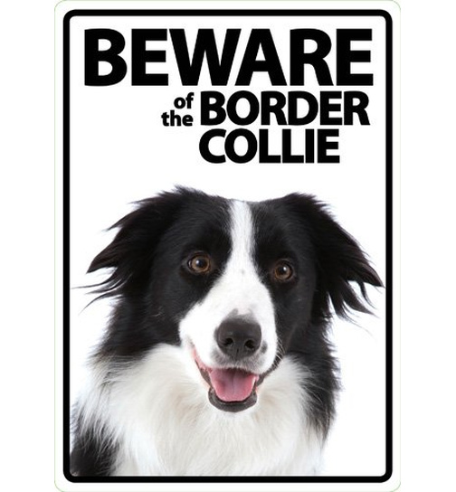 Beware of the Border Collie - Flexi Portrait - Magnet & Steel