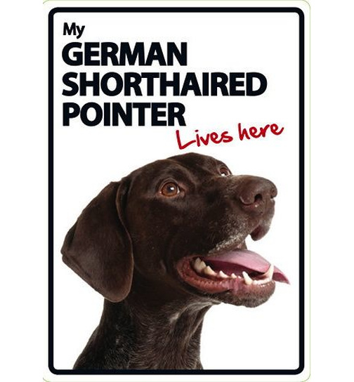 German Shorthaired Pointer Lives Here - Portrait - Magnet & Steel