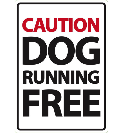 Caution Dog Running Free  - A5 - Magnet & Steel