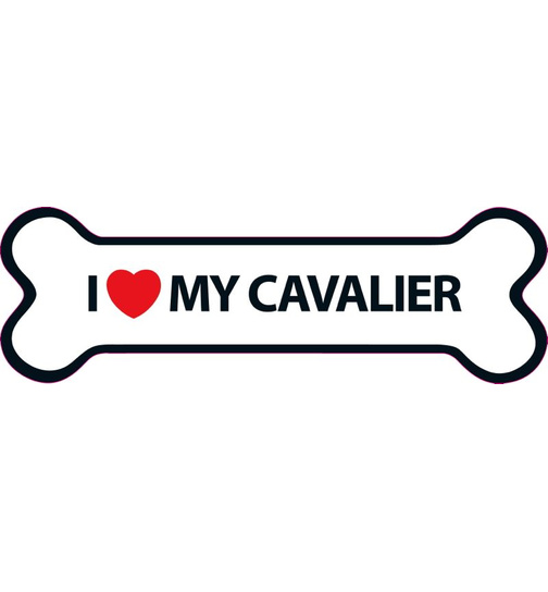 I Love My Cavalier Magnet Knochen