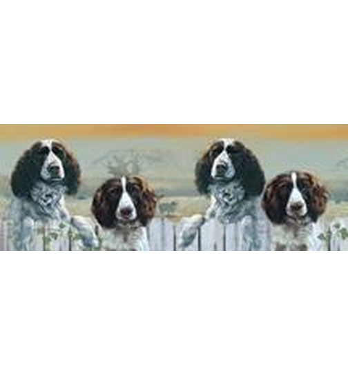 English Springer Spaniels - Springtime - Auslauf