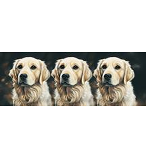 Golden Retriever Trio - Mugs - Becher - Chopes