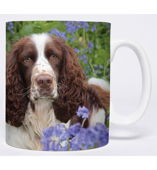 Bluebells - Springer Spaniel - Mug - Becher - Chopes