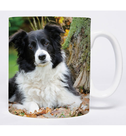 Autumn Leaves - Border Collie - Mug - Becher - Chopes