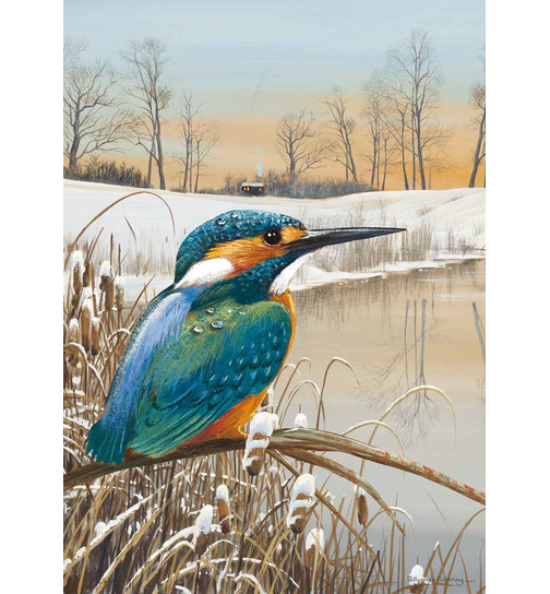 By The Riverbank - Eisvogel  - Puzzle 1000 Teile