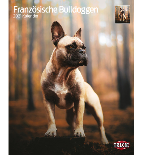 Kalender 2021 French Bulldog - Trixie